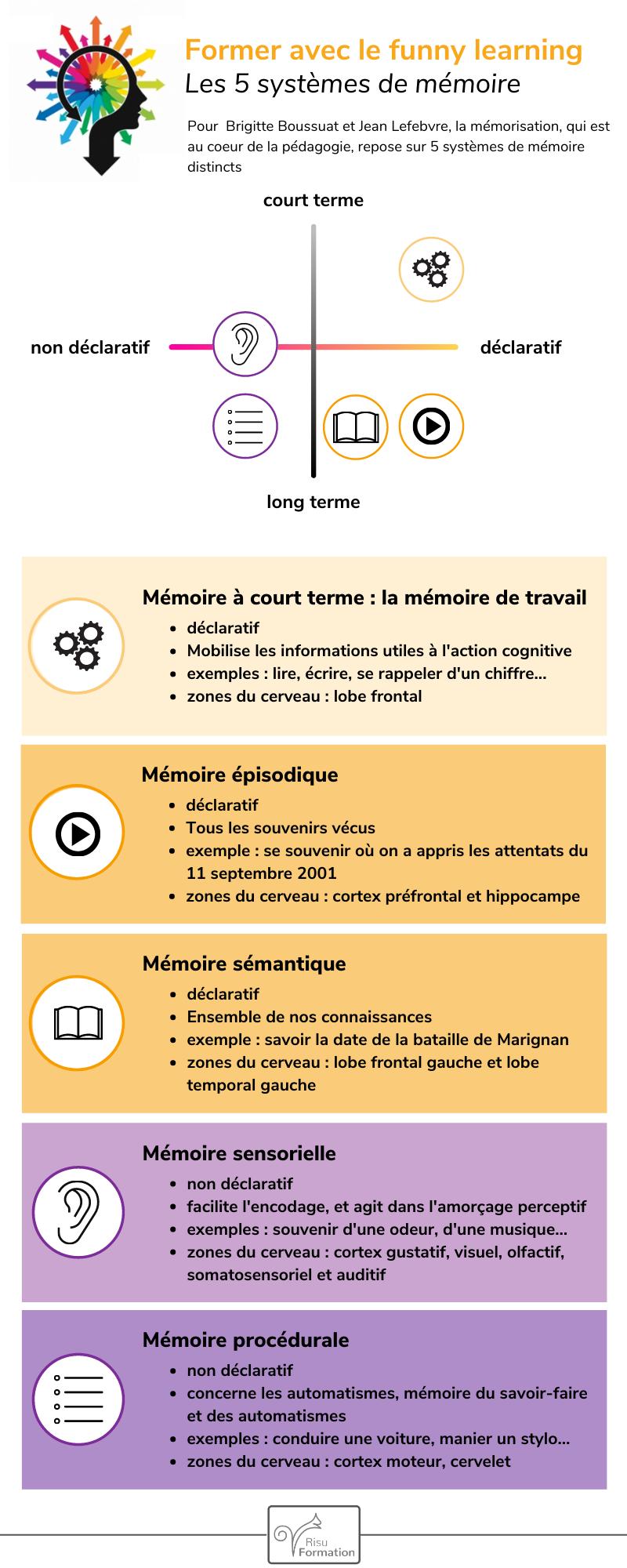 l'infographie de la semaine : les 5 systèmes de mémoire